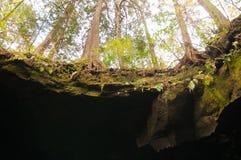 Σπηλιά στην Ιαπωνία Στοκ εικόνα με δικαίωμα ελεύθερης χρήσης