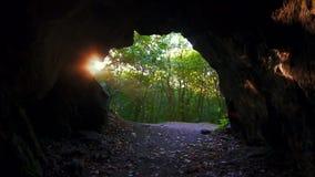 Σπηλιά στο δάσος, άποψη από τη σπηλιά, ακτίνες ήλιων απόθεμα βίντεο