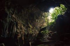 Σπηλιά - κτύπημα Phong Nha KE Στοκ Φωτογραφία