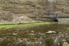 Σπηλιά την άνοιξη Στοκ Φωτογραφίες