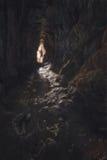 σπηλιά Στοκ Φωτογραφίες