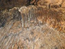 Σπηλιά Marakoopa, Τασμανία στοκ εικόνες