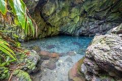Σπηλιές γλυκού νερού στη λάβα στο κρατικό πάρκο Waianapanapa στοκ εικόνα
