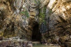 Σπηλιές καθεδρικών ναών, Catlins, νότιο νησί, Νέα Ζηλανδία Στοκ φωτογραφίες με δικαίωμα ελεύθερης χρήσης