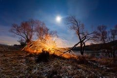 Σπινθήρες από το καίγοντας μαλλί χάλυβα μεταξύ των δέντρων Στοκ φωτογραφία με δικαίωμα ελεύθερης χρήσης