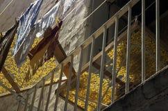 σπιτικά ιταλικά ζυμαρικά Στοκ φωτογραφίες με δικαίωμα ελεύθερης χρήσης