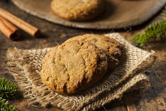 Σπιτικά καφετιά μπισκότα Gingersnap Στοκ φωτογραφίες με δικαίωμα ελεύθερης χρήσης