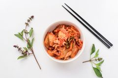Σπιτικά κορεατικά τρόφιμα λάχανων kimchi στοκ εικόνα με δικαίωμα ελεύθερης χρήσης