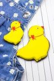 Σπιτικά κοτόπουλα και τζιν μελοψωμάτων Στοκ φωτογραφία με δικαίωμα ελεύθερης χρήσης
