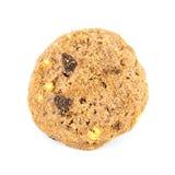 Σπιτικά μπισκότα ζύμης σοκολάτας Στοκ Εικόνες