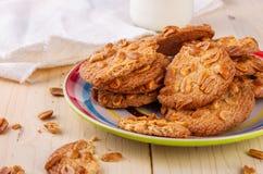 Σπιτικά μπισκότα Σπιτικά κέικ Ελεύθερο κέικ γλουτένης Κέικ με τα καρύδια στοκ εικόνα με δικαίωμα ελεύθερης χρήσης