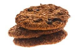 Σπιτικά μπισκότα σοκολάτας στοκ φωτογραφίες με δικαίωμα ελεύθερης χρήσης