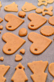 Σπιτικά μπισκότα Στοκ Εικόνες