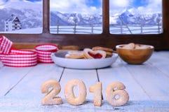 2016 σπιτικά μπισκότα Στοκ Εικόνα