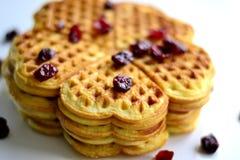 Σπιτικά μπισκότα Στοκ Εικόνα