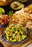 Σπιτικά οργανικά τσιπ Guacamole και Tortilla στοκ εικόνα με δικαίωμα ελεύθερης χρήσης