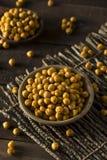 Σπιτικά πικάντικα αλατισμένα ψημένα Chickpeas Στοκ Εικόνες