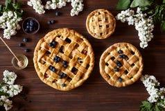 Σπιτικά προϊόντα αρτοποιίας πιτών μήλων ζύμης στο σκοτεινό ξύλινο πίνακα κουζινών με τις σταφίδες, το μέλι και τα μήλα παραδοσιακ Στοκ Εικόνες