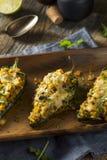 Σπιτικά ψημένα γεμισμένα Quinoa πιπέρια Poblano Στοκ φωτογραφίες με δικαίωμα ελεύθερης χρήσης
