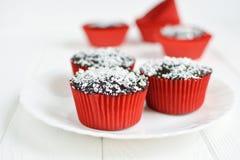 Σπιτικά cupcakes με το λούστρο και την καρύδα σοκολάτας Στοκ Φωτογραφίες