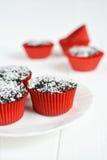 Σπιτικά cupcakes με το λούστρο και την καρύδα σοκολάτας Στοκ εικόνα με δικαίωμα ελεύθερης χρήσης