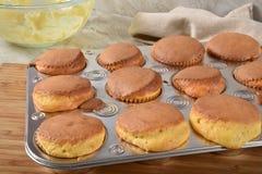 Σπιτικά cupcakes φρέσκα από το φούρνο στοκ εικόνες