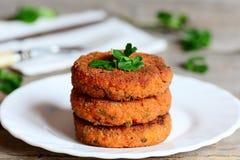 Σπιτικά cutlets καρότων σε ένα πιάτο Εύγευστα τηγανισμένα cutlets καρότων με τα πράσινους κρεμμύδια και το μαϊντανό Υγιής meatles Στοκ φωτογραφίες με δικαίωμα ελεύθερης χρήσης