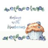 Σπιτικά muffins βακκινίων με τα πραγματικά βακκίνια διανυσματική απεικόνιση