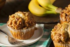 Σπιτικά Muffins καρυδιών μπανανών Στοκ φωτογραφία με δικαίωμα ελεύθερης χρήσης