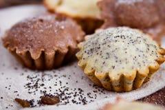 Σπιτικά muffins με την παπαρούνα στοκ εικόνες με δικαίωμα ελεύθερης χρήσης