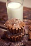 Σπιτικά muffins σοκολάτας με το γάλα στοκ εικόνες