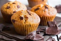 Σπιτικά Muffins τσιπ σοκολάτας στοκ φωτογραφία με δικαίωμα ελεύθερης χρήσης