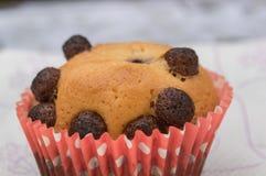 σπιτικά muffins Στοκ φωτογραφία με δικαίωμα ελεύθερης χρήσης