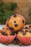 σπιτικά muffins Στοκ Εικόνες