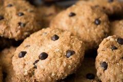 Σπιτικά oatmeal μπισκότα με τη μακρο άποψη κινηματογραφήσεων σε πρώτο πλάνο πτώσεων σοκολάτας τρώγεται έτοιμος στοκ φωτογραφία