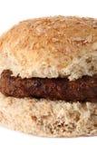 σπιτικά oatmeal χάμπουργκερ λα&chi στοκ εικόνες