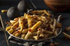 Σπιτικές αλμυρές τηγανιτές πατάτες τυριών στοκ φωτογραφία με δικαίωμα ελεύθερης χρήσης