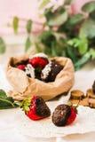Σπιτικές βυθισμένες σοκολάτα φράουλες με τις νιφάδες καρύδων και το s Στοκ εικόνες με δικαίωμα ελεύθερης χρήσης