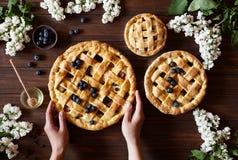 Σπιτικές πίτες μήλων ζύμης αρτοποιείων στο σκοτεινό ξύλινο πίνακα κουζινών με τις σταφίδες, το βακκίνιο, το μέλι και τα μήλα παρα Στοκ φωτογραφίες με δικαίωμα ελεύθερης χρήσης