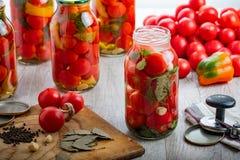 Σπιτικές παστωμένες ντομάτες στο βάζο Εκλεκτική εστίαση στοκ εικόνα