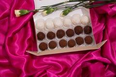 σπιτικές τρούφες σοκολά& Χειροποίητα γλυκά Στοκ Φωτογραφίες