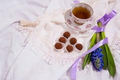 σπιτικές τρούφες σοκολά& Χειροποίητα γλυκά Στοκ φωτογραφίες με δικαίωμα ελεύθερης χρήσης
