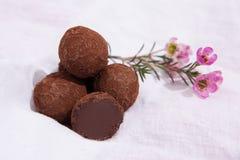 σπιτικές τρούφες σοκολά& Χειροποίητα γλυκά Στοκ Εικόνες