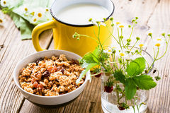 Σπιτικές granola και κούπα του γάλακτος Στοκ εικόνα με δικαίωμα ελεύθερης χρήσης