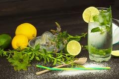 Σπιτική λεμονάδα με το φρέσκες λεμόνι και τη μέντα Δροσερή, αναζωογονώντας εμβύθιση το καυτό καλοκαίρι Στοκ εικόνα με δικαίωμα ελεύθερης χρήσης