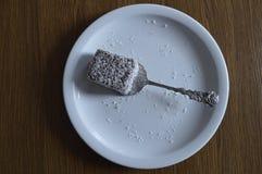 Σπιτική ζύμη, κέικ με την καρύδα Στοκ Εικόνες