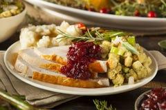 Σπιτική ημέρα των ευχαριστιών Τουρκία σε ένα πιάτο Στοκ Εικόνες