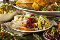 Σπιτική ημέρα των ευχαριστιών Τουρκία σε ένα πιάτο Στοκ Φωτογραφίες