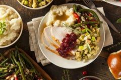 Σπιτική ημέρα των ευχαριστιών Τουρκία σε ένα πιάτο Στοκ φωτογραφία με δικαίωμα ελεύθερης χρήσης