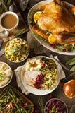 Σπιτική ημέρα των ευχαριστιών Τουρκία σε ένα πιάτο Στοκ εικόνα με δικαίωμα ελεύθερης χρήσης